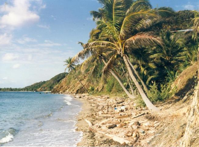 Land For Sale in Guanaja, Bay Islands