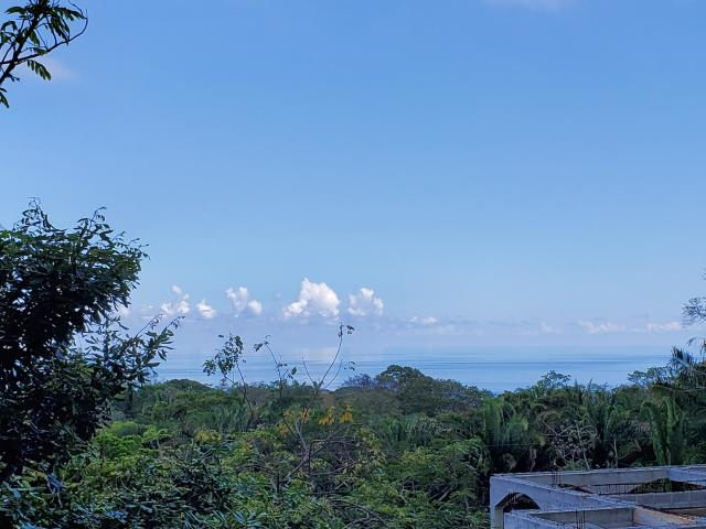 Land for Sale in roatan