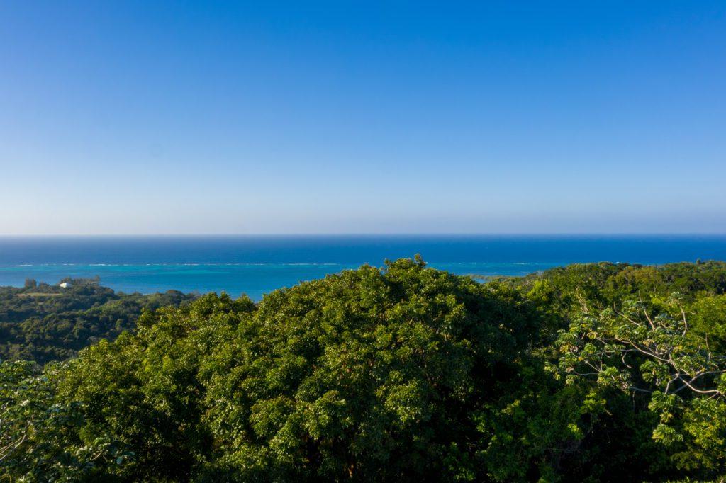 Ocean view property in Roatan